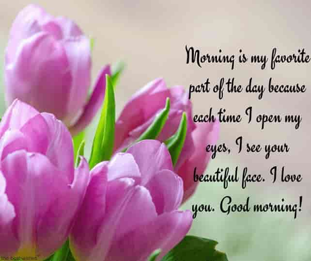 good morning beautiful text with flowers