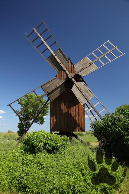 Suede-ile-Oland-moulin-vent