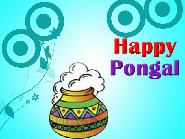 Happy Pongal HD Wallpapers Free