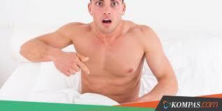 Menuntaskan kutil kelamin di batang penis
