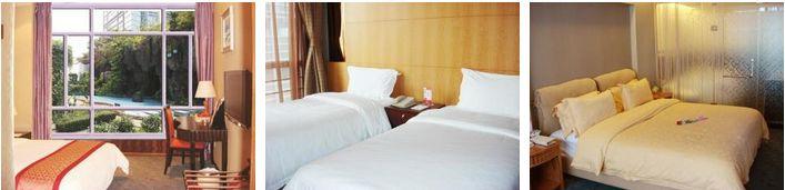 Golden Central Hotel Shenzhen