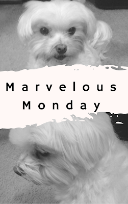 #MarvelousMonday, Lexi, TBR, currently reading, On My Kindle Book Reviews