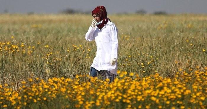 Israel Selidiki Penembakan Paramedis Palestina Razan ...
