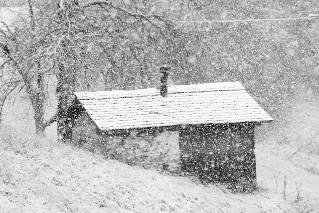 Small wood cottage in wilderness in snow. Chimney. Trees.
