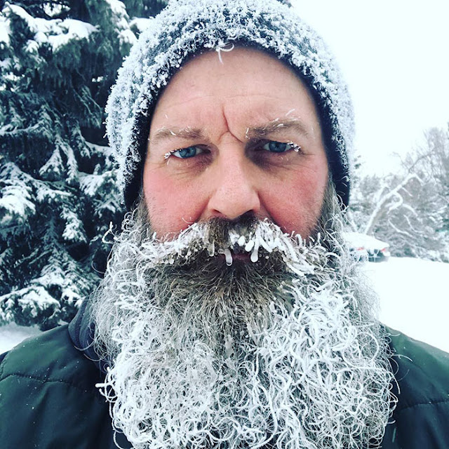 BON JEUDI Quand-le-gel-cree-de-l-art-039-barbe-glacee