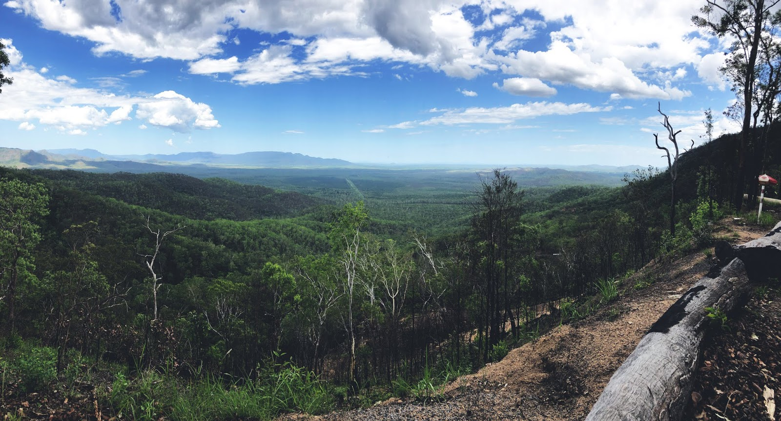 Punkt widokowy w australijskim parku narodowym Girringun na wgórza pokryte lasem deszczowym.