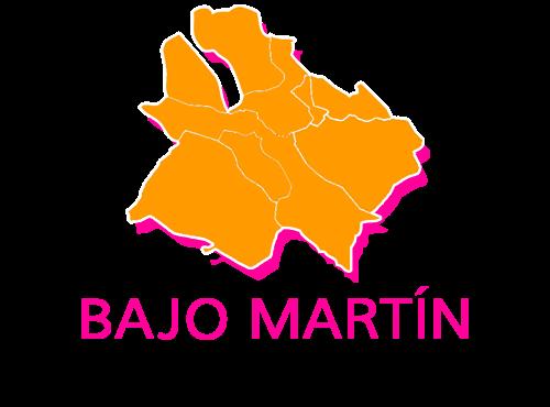 Comarca del Bajo Martín