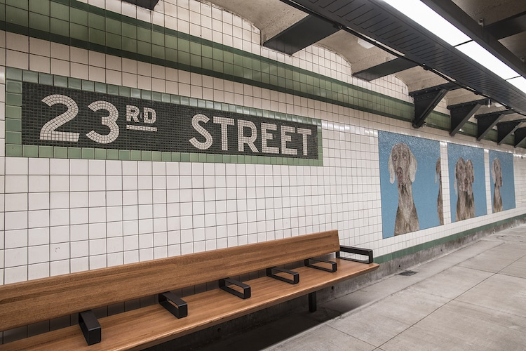 Artist Redesigns NYC Subway Station With Colorful Dog Mosaics