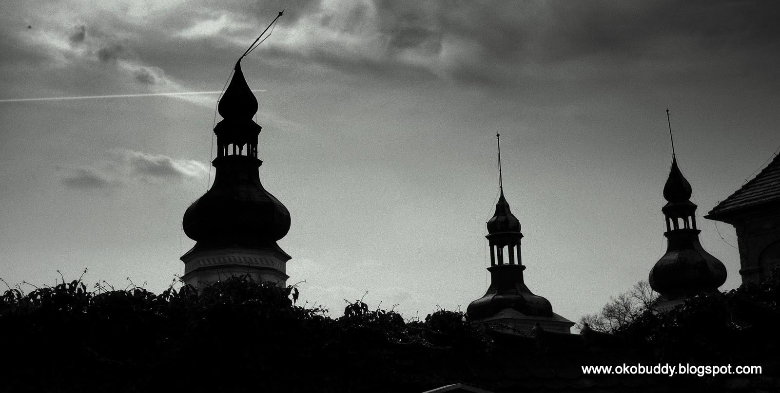 Pałac Żyrowa