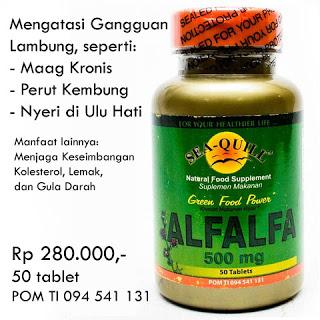 Sea Quill Alfalfa Suplemen Kesehatan Lambung dan Maag