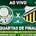 Jogo  Palmeiras x Novorizontino Ao Vivo 26/03/2019