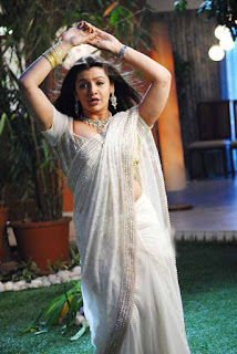 Aarti_Agarwal_hot_saree_picture