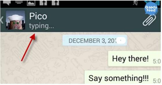 Cara Menyembunyikan Status Sedang Mengetik di WhatsApp