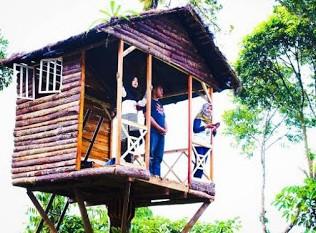 http://www.teluklove.com/2016/11/pesona-keindahan-wisata-kalibaya-park.html