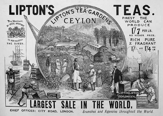 Lipton Tea Advertising 1896