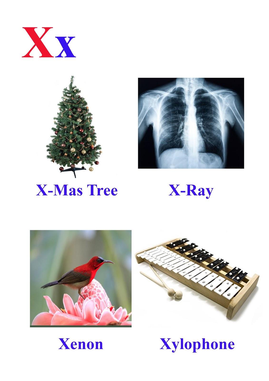 X Letter Words Kidseasylearn