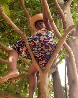 Curvy Slay Queen Dangerously Climbs Tree To Twerk To Davido's New Song (Video)