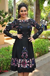 Actress Rakul Preet Singh Pictures in Short Dress at Sarrainodu Press Meet  0050