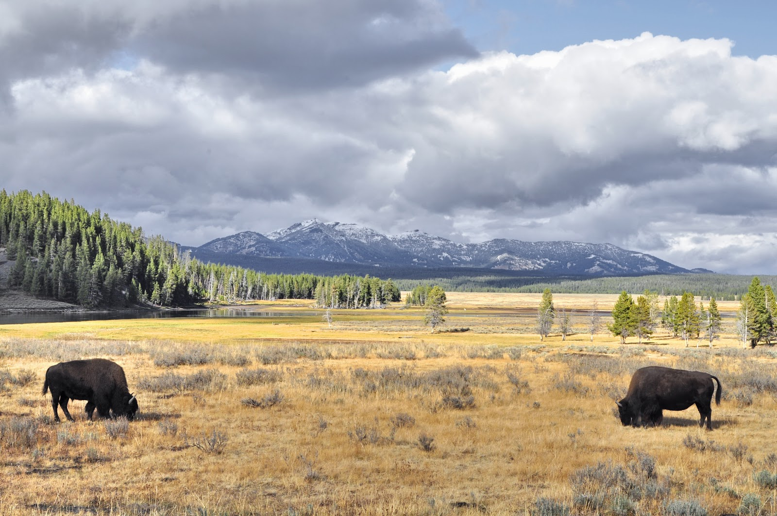 Western Fine Art Photography: Western Fine Art Photography