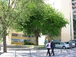Blog Del Centro Clínico Betanzos 60 Seguros Médicos