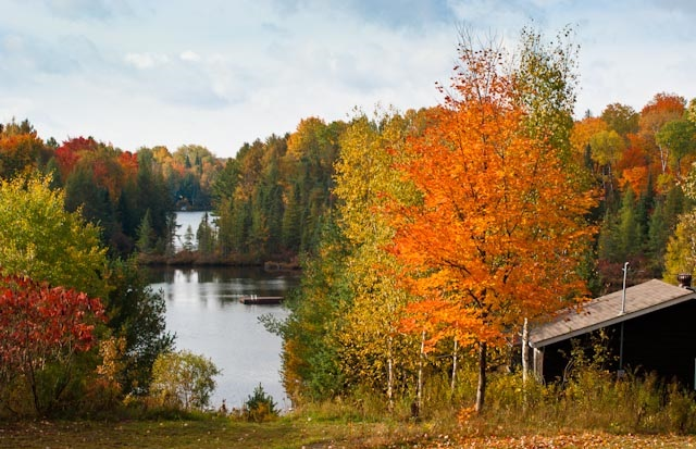 Anyone for a writers' retreat in Haliburton?