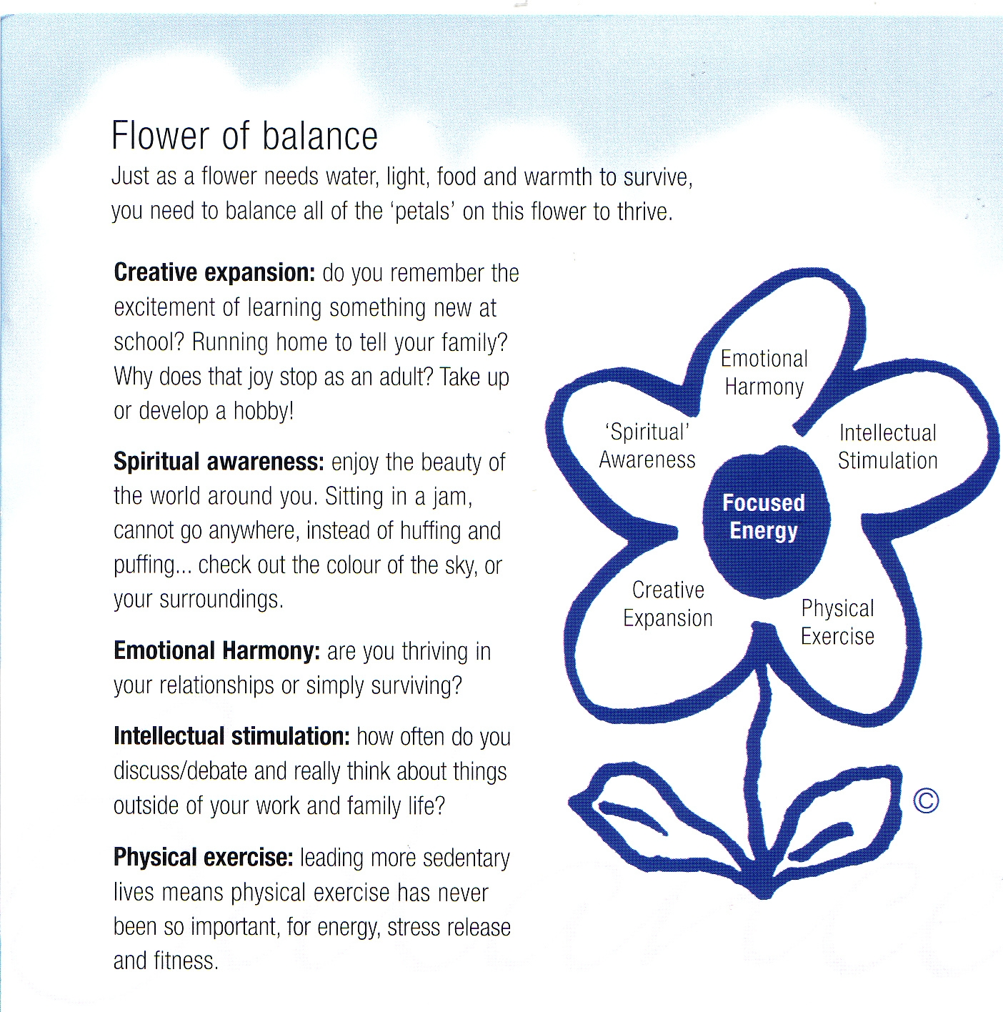 Penny Anne O'Donnell's Flower of Balance