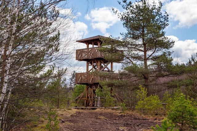 Rundweg im Säumermoor - Soumarské rašeliniště | Wandern im tschechischen Böhmerwald | Nationalpark Sumava | Soumarský Most | Wandern Šumava 06