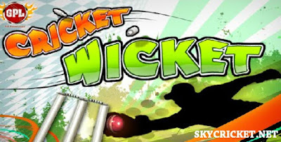 Play Cricket Wicket Game | Fun Game