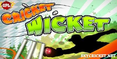 Free online cricket wicket game