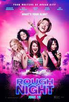 rough night poster