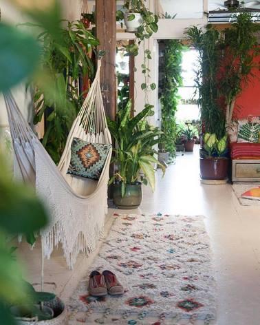 Hamaca y muchas plantas de interior en un apartamento de Brooklyn