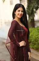 Kashish Vohra in Transparent Dre at Sapragiri LLB Success Meet ~  Exclusive 005.jpg