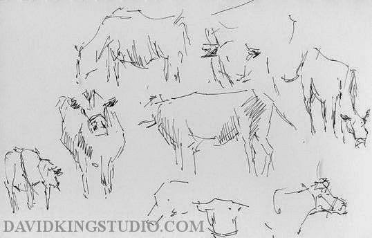 art sketch pen life cow cattle wheeler farm