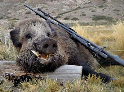 Συστάσεις προς τους κυνηγούς για αναρτήσεις με θηράματα