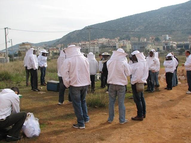 Συνεχίζονται τα μελισσοκομικά σεμινάρια της ANEL στην Αθήνα!