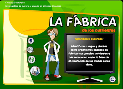 http://www.ceiploreto.es/sugerencias/Educarchile/conocimento/09_fabrica_nutrientes/LearningObject/index.html