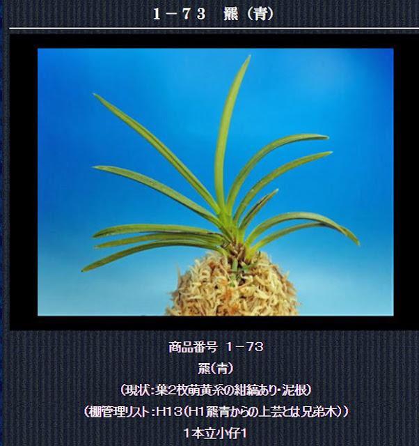 http://www.fuuran.jp/1-73.htm