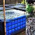 Manajemen Pengelolaan Kualitas Air Yang Baik Pada Usaha Budidaya Ikan Lele