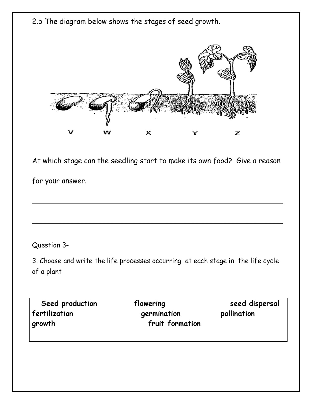small resolution of WORLD SCHOOL OMAN: Revision worksheets foe grade 5