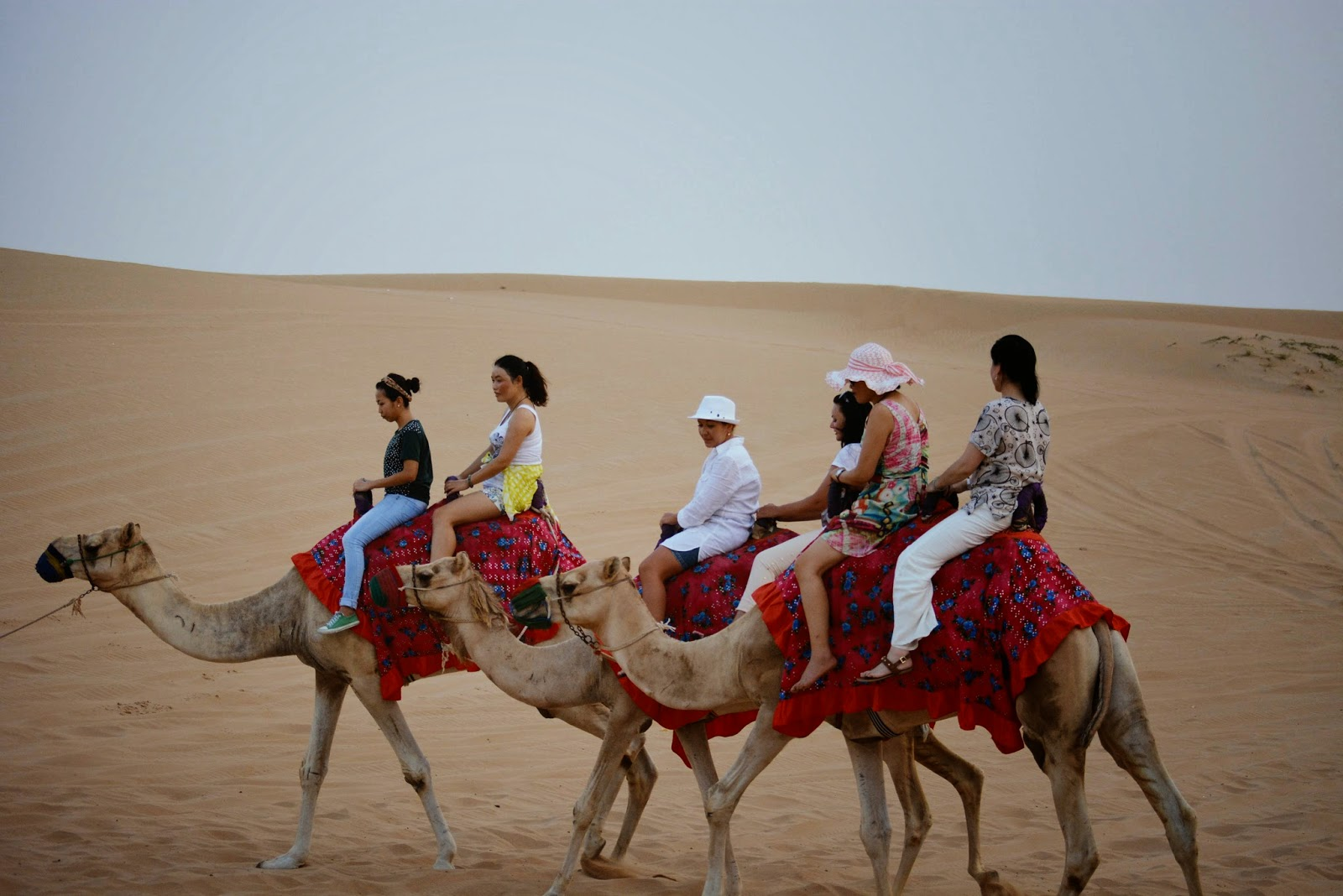 Dubai Desert Safari Experience
