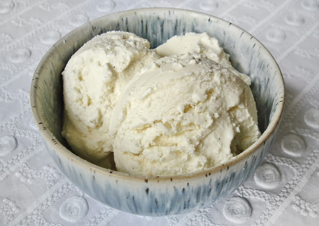 Vanilla Ice Cream or Frozen Yogurt SCD