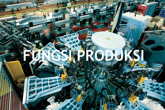 Pengertian Fungsi Produksi dan Macam - Macam Fungsi Produksi