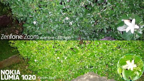 Perbandingan Kamera Asus Zenfone Zoom vs. Lumia 1020