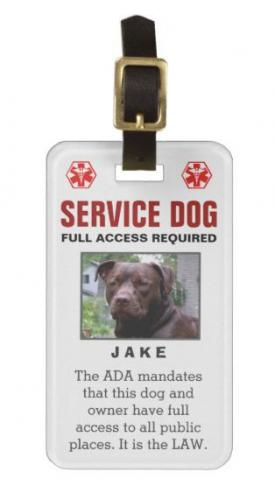 Service Dog - Full Access Required Badge