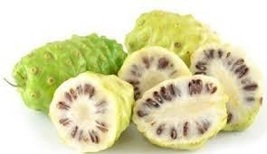 Cara ampuh basmi ketombe yang membandel dengan buah mengkudu