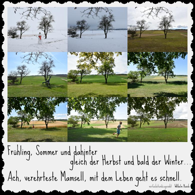 Acker im Jahreslauf mit Wilhelm Busch Gedicht: Frühling, Sommer und dahinter...