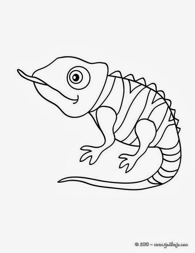 Maestra de Primaria: Dibujos de camaleones para colorear