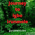 Journey To Igbo Irunmole (episode 14)