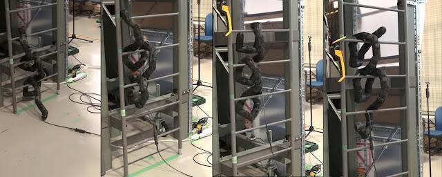Eita! Cobra robótica japonesa é capaz até mesmo de subir escadas - Winew