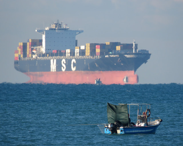 The fishing boat with the faraway container ship MSC Toronto, Livorno